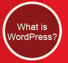 What Is WordPress Button